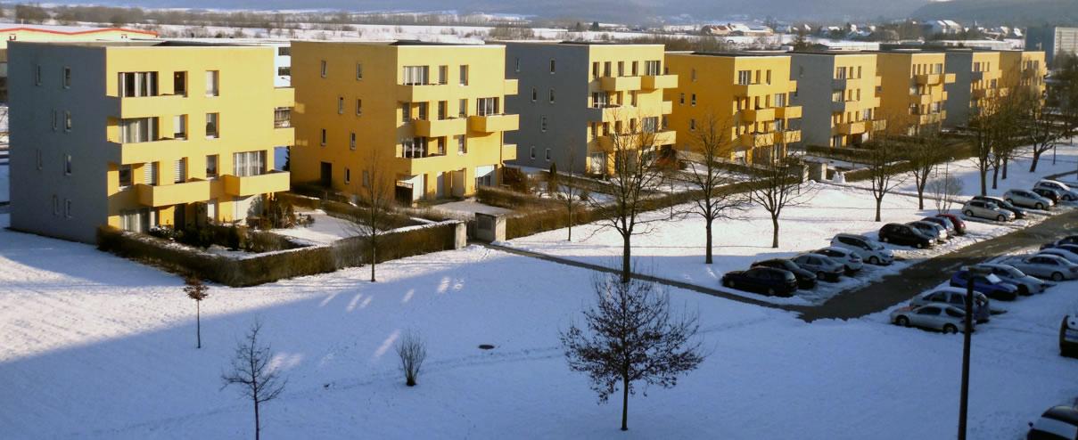PropertyCleaning Winterdienst